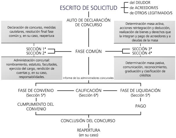 concurso-de-acreedores-esquema-proceso